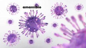 Voici comment soigner le virus de l'herpès génitale